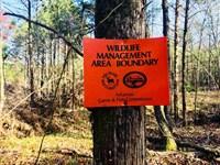 Wma Hot Spot, Buy 11 Acres. Hun : Highland : Sharp County : Arkansas