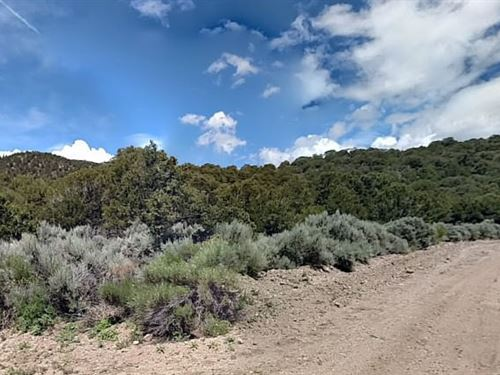 Costilla County, Co $12,000 Neg : Fort Garland : Costilla County : Colorado