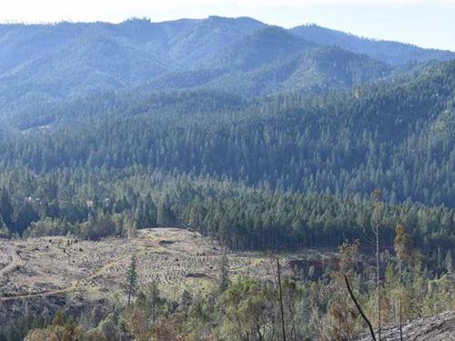 Lower Grave Creek Ranch : Wolf Creek : Josephine County : Oregon