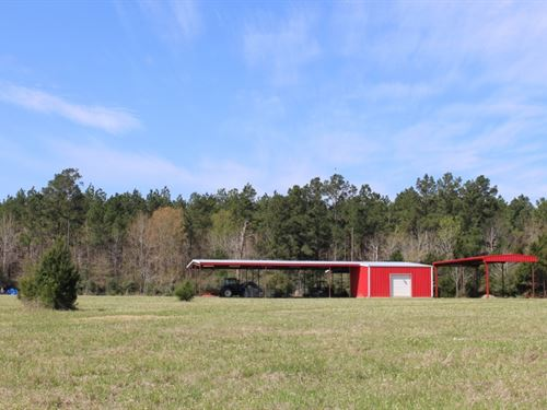 Double T Ranch : Coldspring : San Jacinto County : Texas