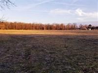 Farm/Hunting Land Near Republic, : Republic : Greene County : Missouri