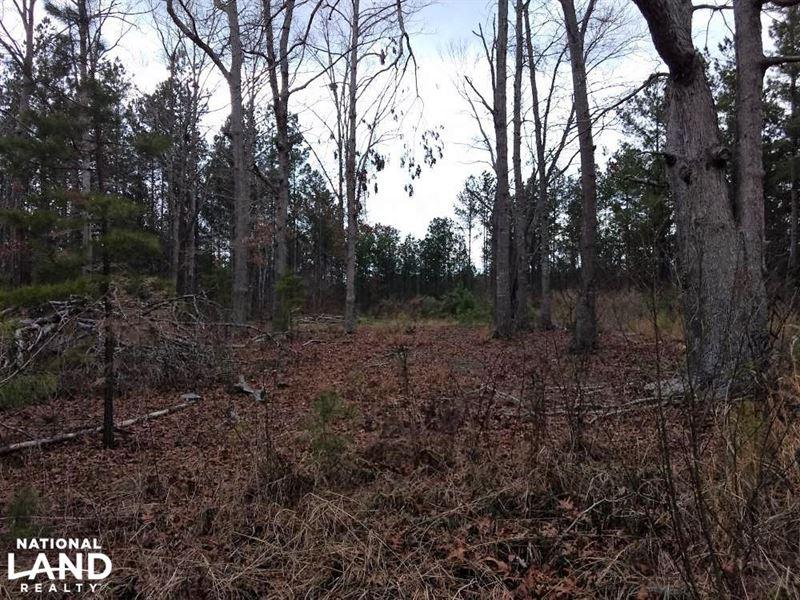 Glendon Land : Robbins : Moore County : North Carolina