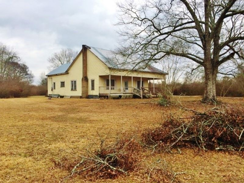80 Acres House Pond Creek For Sal : Magnolia : Pike County : Mississippi