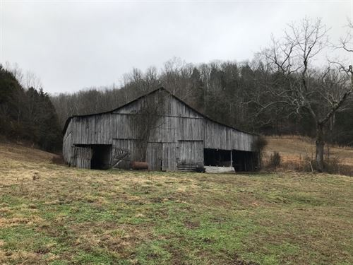 20 Acres In Cumberland County, Ky : Burkesville : Cumberland County : Kentucky