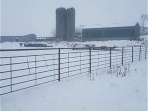56 Acre Working Dairy Farm : South Wayne : Lafayette County : Wisconsin