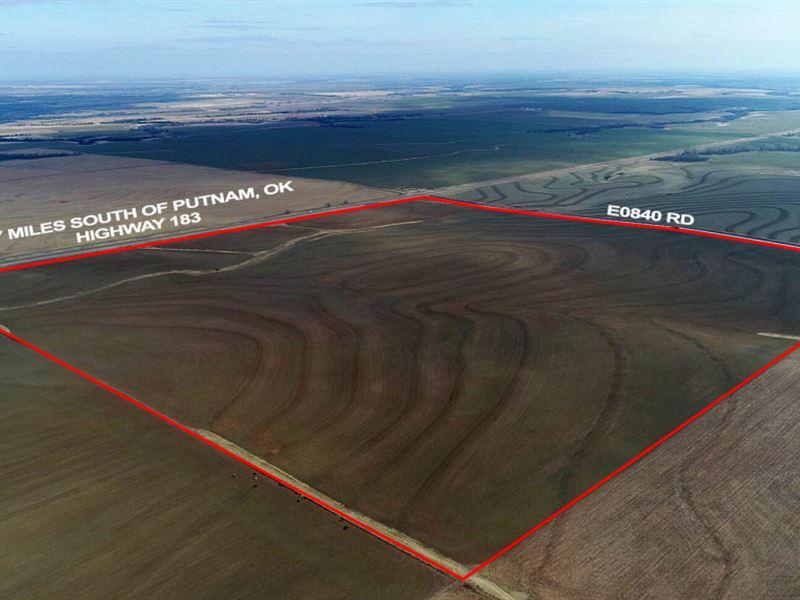 Livestock Or Grain Producer : Putnam : Custer County : Oklahoma
