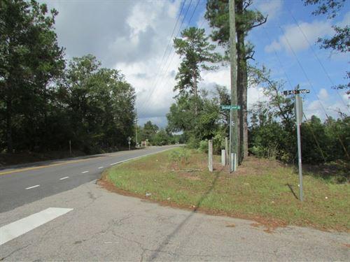 Old Manning Road Tract : Sumter : South Carolina