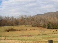 40.78 Unrestricted Acres Near Lake : Mooresburg : Hawkins County : Tennessee