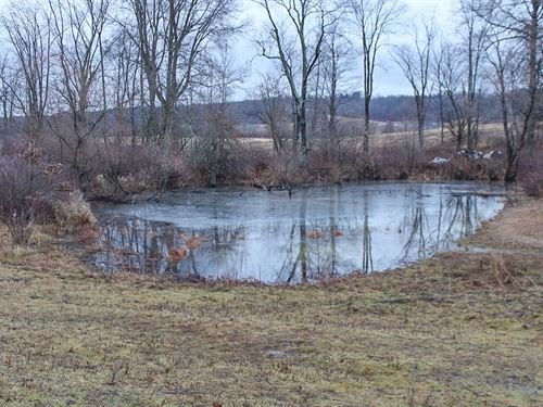 Bluebell Rd - 40 Acres : Cumberland : Guernsey County : Ohio