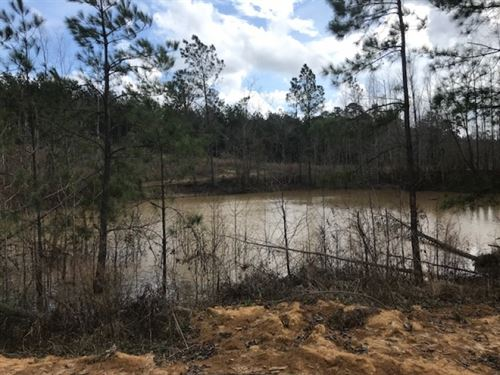 107 Acres Wilkinson Co. Stump Road : Gloster : Wilkinson County : Mississippi
