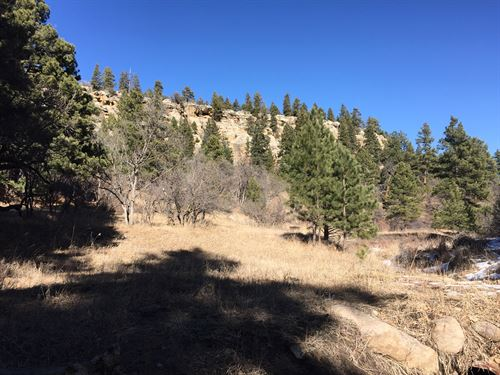 Deer Trail : Rye : Pueblo County : Colorado