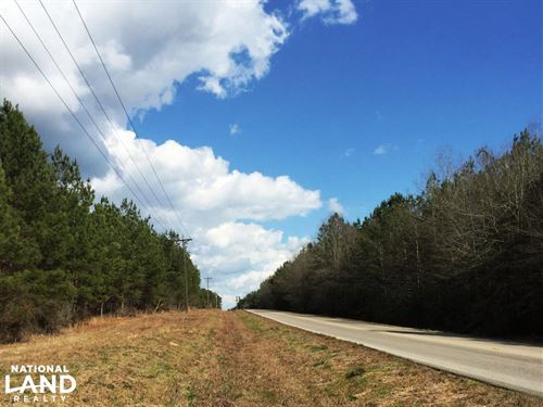Hwy 29 Possible Residential Propert : Ovett : Perry County : Mississippi