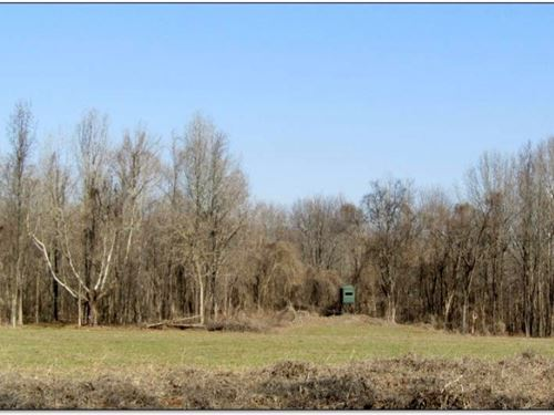 74.3 Acres In Panola County : Crenshaw : Panola County : Mississippi