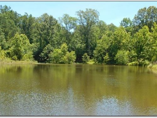 210 Acres In Yazoo County : Yazoo City : Yazoo County : Mississippi