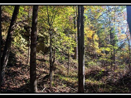 600 Acres Lawrence County : Ironton : Lawrence County : Ohio