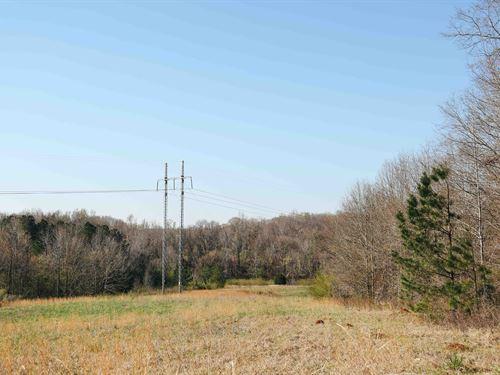 Eatonton Land - Whole Or Split : Eatonton : Putnam County : Georgia