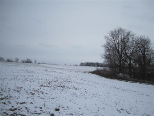 48 Ac M/L Farm Land And Rec Auction : Mercer : Missouri