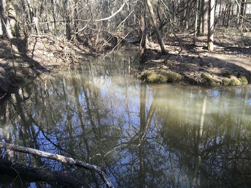 This 39.12 Acre Piece of Prope : Zion : Izard County : Arkansas