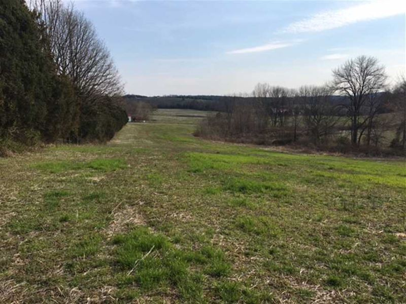 36 Acres in Brownsville, KY : Brownsville : Edmonson County : Kentucky