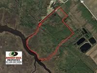 65 Acres of Waterfront Land For Sa : Swan Quarter : Hyde County : North Carolina