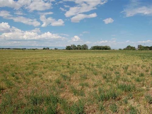 11.99 Acres of Irrigated Land in : Powell : Park County : Wyoming