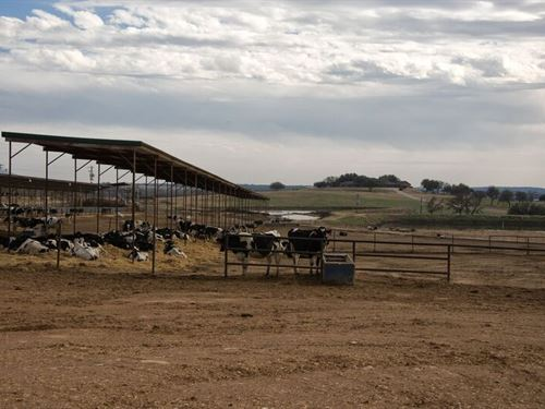 Dairy Farm, Income Producing Lease : Dublin : Erath County : Texas