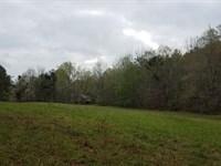 Caldwell Spring 57+/- Acres Clay Co : Cragford : Clay County : Alabama