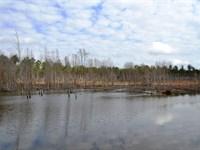 Edwards Farm : Elmore : Elmore County : Alabama
