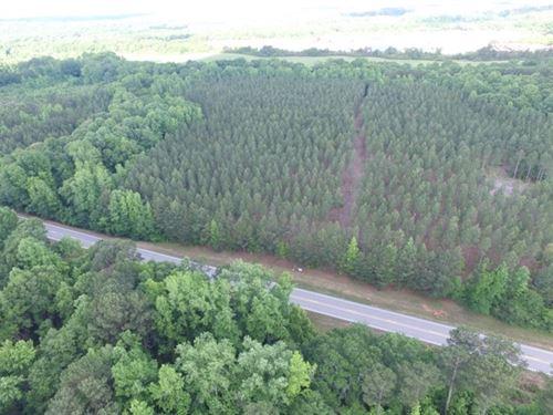 Land Just Outside Woodbury : Woodbury : Meriwether County : Georgia