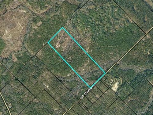 Timber And Hunting Opportunity : Dublin : Laurens County : Georgia