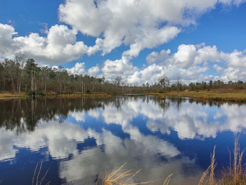 Twin Ponds Plantation : Sparta : Hancock County : Georgia