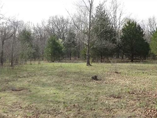 80 Acre Recreational Tract in Camd : Camdenton : Camden County : Missouri