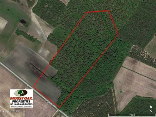 Under Contract, 18 Acres of Resid : Grifton : Craven County : North Carolina