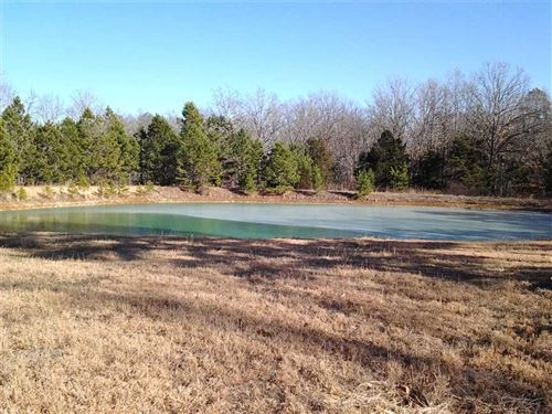 90 Acres With Plenty of Everything : Licking : Texas County : Missouri