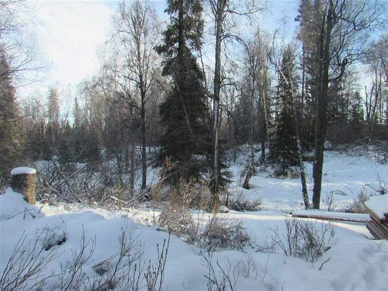 Lakefront Property Close to Town : Kenai : Kenai Peninsula Borough : Alaska
