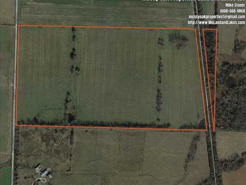 Great 77 Acre Cattle Farm OR Row : Bolivar : Polk County : Missouri