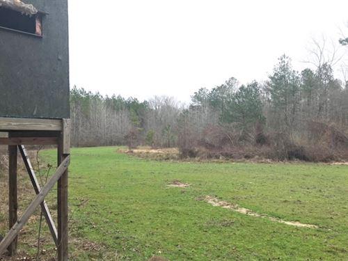 28.5 Acres In Scott County : Pulaski : Scott County : Mississippi