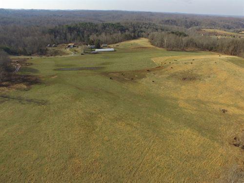 140 Acres In Metcalfe County, Ky : Breeding : Metcalfe County : Kentucky