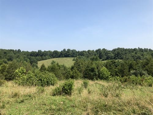 50 Acres In Metcalfe County, Ky : Edmonton : Metcalfe County : Kentucky