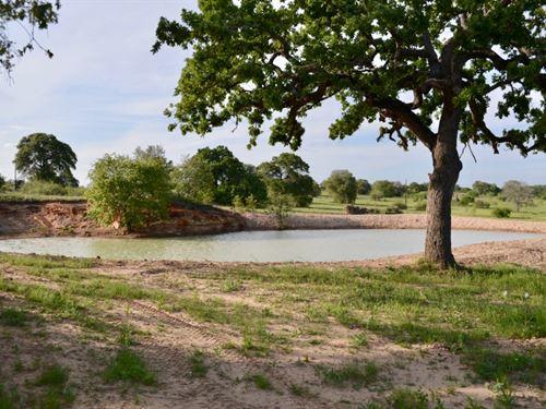 Atascosa River Ranch : Lytle : Atascosa County : Texas