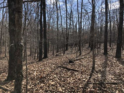 27 Wooded Acres With Several Build : Ash Flat : Sharp County : Arkansas