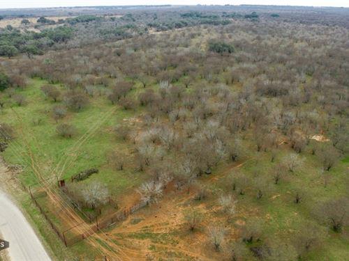 Wilson Co 185 Ranch : Floresville : Wilson County : Texas