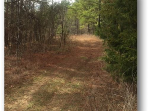 148 Acres In Yalobusha County : Oakland : Yalobusha County : Mississippi