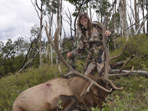 Cornerstone Elk Ranch : Ridgway : Montrose County : Colorado