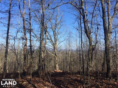Moody Timber & Potential Developmen : Moody : Saint Clair County : Alabama