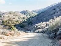 Remote Tehachapi Mountain Land : Tehachapi : Kern County : California