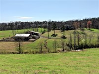 Poultry Farm, Home, & 78+/- Ac : Cullman : Cullman County : Alabama