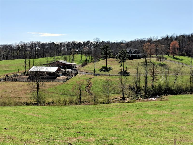 Poultry Farms For Sale In Alabama, Wholesale & Suppliers ...