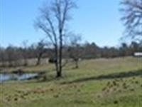 Beautiful Horse Farm With Pond : Comer : Oglethorpe County : Georgia