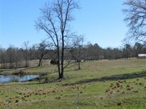 Beautiful Horse Farm With Pond : Comer : Oglethorpe County : Georgia